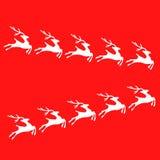 Белый северный олень бесплатная иллюстрация