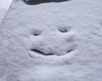 Белый снег с тонет улыбка кота Стоковое Фото