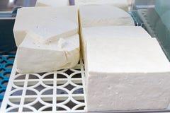 Белый сыр рассола от молока коровы, козы или овец готового для еды Sirene белого рассола болгарское готовое для consummation Trad Стоковая Фотография RF