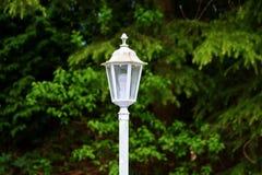 Белый фонарик стоя на улице в древесинах Стоковые Изображения RF