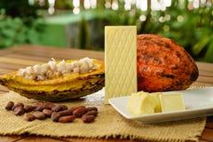 Белый шоколадный батончик, сырцовый плодоовощ какао, фасоли какао, масло какао на деревянном столе Стоковые Изображения