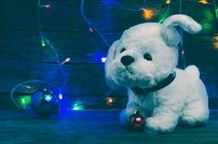 Белый щенок с украшениями рождества на воротнике на предпосылке включил гирлянды рождества Стоковые Фотографии RF