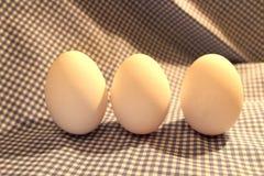 3 белых пасхального яйца для красить Стоковое Изображение RF