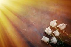6 белых роз на красивой каменной предпосылке Космос для ярлыка Стоковые Изображения