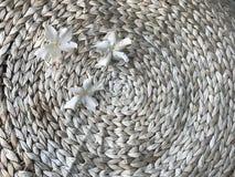 3 белых цветка othalanga на круглом столе гиацинта воды Стоковое Изображение
