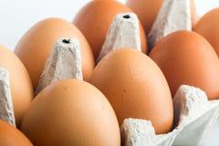10 белых яичек в коробке яичка - близкое поднимающего вверх Стоковое Изображение
