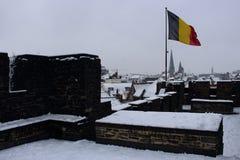 Бельгийский полет при ветре флага на старой крыше замка с красивым видом на городке зимы Исторические здания и крыши замка в снег Стоковые Фотографии RF