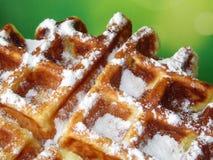 Бельгийский waffle взбрызнутый с напудренным сахаром Стоковые Изображения