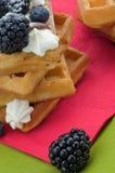 Бельгийский Waffle и ягоды Стоковые Изображения