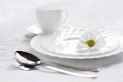 беля тарелки стоковые изображения rf