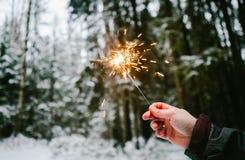 Бенгальские огни вручают людей Предпосылка леса Snowy стоковое фото