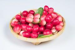 Бенгали-смородины в корзине Стоковое фото RF