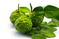 Бергамот и листья Стоковое Фото