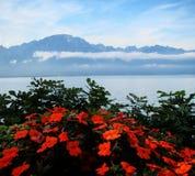 Берега женевского озера Стоковая Фотография RF