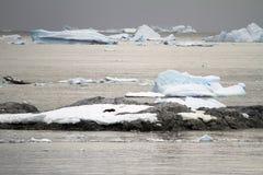 Береговая линия Антарктики - глобальное потепление - образования льда Стоковые Фотографии RF