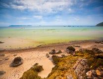 Береговая линия ландшафта волны моря пляжа стоковая фотография rf