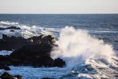 Береговая линия волн и северной калифорния Тихого океана Стоковое Фото