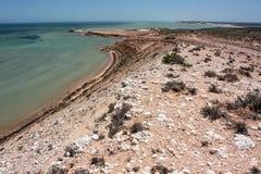 Береговая линия залива акулы Стоковая Фотография