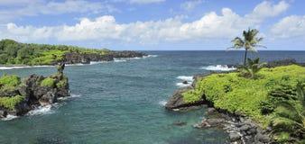 Береговая линия Мауи, Гаваи стоковые изображения rf