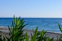 Береговая линия моря в фокусе Стоковые Фото