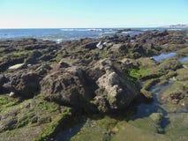 береговая линия утесистая стоковое фото rf