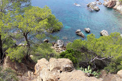 Береговая линия Lloret De mar Стоковые Изображения RF
