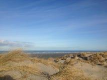 береговая линия Terschelling Стоковое Изображение RF