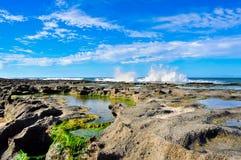 береговая линия Бразилии Стоковые Фотографии RF
