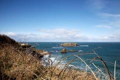 береговая линия Ирландия северная Стоковая Фотография RF