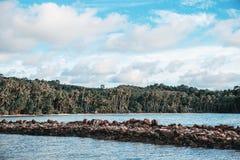 Береговая линия и камень на море стоковая фотография
