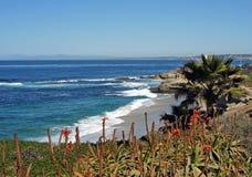 Береговая линия Калифорнии Стоковые Фотографии RF