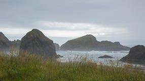 Береговая линия Калифорния скалистая через высокие травы стоковая фотография