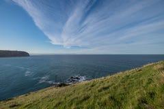Береговая линия Новой Зеландии стоковая фотография