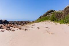 Береговая линия океана вегетации песка пляжа скалистая Стоковое Изображение