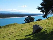 береговая линия tauranga Стоковое Изображение RF