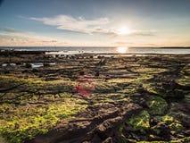 Береговые породы пункта Ricketts на заходе солнца Стоковые Фото