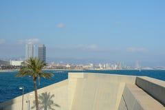 Берег бетонной стены и дерева на море в Барселоне Стоковое Изображение