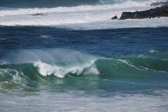 берег Гавайских островов северный oahu буг восхождения на борт Стоковое Фото