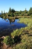 берег горы озера стоковая фотография rf