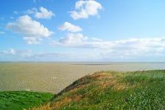 Берег зеленого моря стоковая фотография