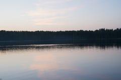 берег листьев озера цветков абстракции Стоковое Изображение