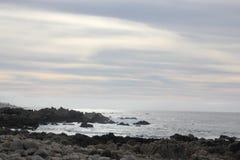 Берег моря вдоль утеса Китая, привода 17 миль, Калифорнии, США Стоковые Изображения RF