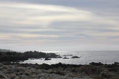 Берег моря вдоль утеса Китая, привода 17 миль, Калифорнии, США Стоковые Изображения