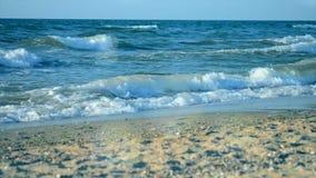 Берег моря море акции видеоматериалы