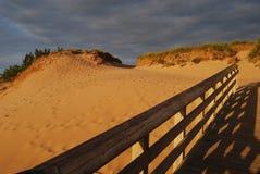 Берег озера дюн медведя спать Стоковые Изображения RF