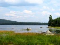 Берег озера на пасмурный день стоковые фотографии rf