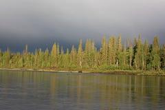 Берег озера перед штормом Стоковые Фотографии RF