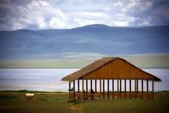Берег озера Стоковые Фото