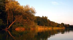 Берег озера 01 Стоковая Фотография RF