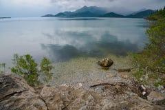 Берег озера Skadar Стоковая Фотография RF